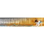 BARTOŠOVÁ HANA-PSÍ SALON – logo společnosti