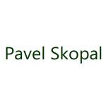 Pavel Skopal – logo společnosti
