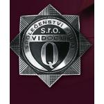 VIDOCQ, s.r.o. – logo společnosti