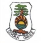 Pionýr, z. s. - Pionýrská skupina Rokycany jih – logo společnosti