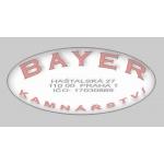 BAYER FRANTIŠEK - KAMNÁŘSTVÍ – logo společnosti