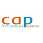 Ing. Jindřich Holý, CSc. – logo společnosti