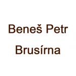 PETR BENEŠ - teflonování a tryskání – logo společnosti