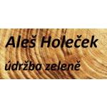 Aleš Holeček – logo společnosti
