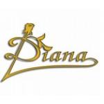Diana Svatební salon – logo společnosti