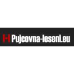 Lešení Vysočina s.r.o. – logo společnosti