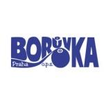 Borůvka Praha o.p.s. - Kvalitnější život s handicapem – logo společnosti