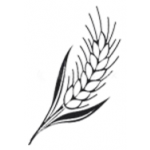 BUBENÍK ROMAN-ZEMĚDĚLSKÉ SLUŽBY – logo společnosti