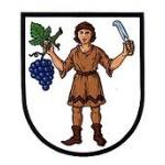 Město Hluk – logo společnosti