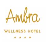Hotel AMBRA s.r.o. - Wellness hotel Rezidence Ambra**** – logo společnosti