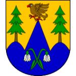 Obec Strážná – logo společnosti