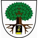 Obec Telecí – logo společnosti
