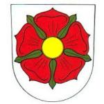 Město Nechanice – logo společnosti