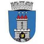 Město Vysoké Veselí – logo společnosti
