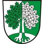 Obec Dubenec – logo společnosti