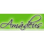 Jazyková škola AMÁDEUS, s.r.o. – logo společnosti