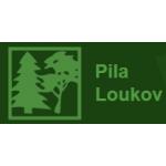 Lesy pod Javorníkem s.r.o. – logo společnosti