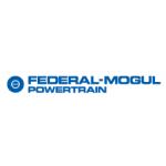 Federal-Mogul Friction Products a.s. – logo společnosti