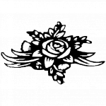 Václavková a spol. s.r.o. (pobočka Kralice na Hané) – logo společnosti