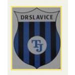 Tělovýchovná jednota Drslavice – logo společnosti