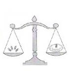 DAŇOVÁ A ÚČETNÍ KANCELÁŘ - Ing. Květoslava Skalová – logo společnosti