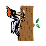 Tess trading, s.r.o. – logo společnosti