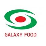 GALAXY FOOD s.r.o. – logo společnosti