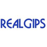 REALGIPS s.r.o. – logo společnosti
