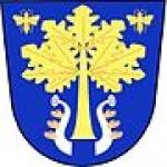 Úřad městyse Dub – logo společnosti