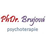 Brujová Zdeňka, PhDr. – logo společnosti