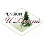 PENZION U TROJANŮ Volary – logo společnosti
