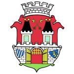 Město Chýnov – logo společnosti