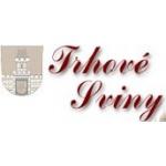 Základní škola Trhové Sviny – logo společnosti