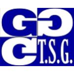 Táborské soukromé gymnázium, s.r.o. – logo společnosti