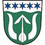 Obecní úřad Omlenice – logo společnosti