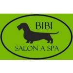 BIBI Salon a Spa – logo společnosti