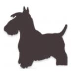 MVDr. Helena Vlková - veterinární ordinace – logo společnosti