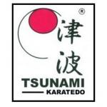 Karatedo klub TSUNAMI České Budějovice – logo společnosti