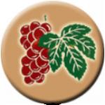 THOWT, s.r.o. - lékárna U Červeného hroznu – logo společnosti