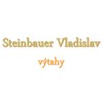 Steinbauer Vladislav- výtahy Strakonice – logo společnosti