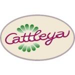 Velkoobchod květinami a dekorativními předměty - Cattleya – logo společnosti