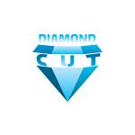 Šleis Petr- DIAMOND STAVBY – logo společnosti