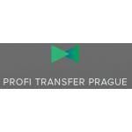 Martin Vorlíček - profitransferprague.cz (Praha-město) – logo společnosti