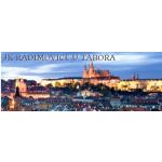 Jezdecký klub Radimovice u Tábora – logo společnosti