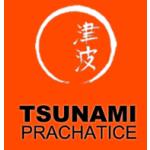 Karatedo klub Tsunami Prachatice, o. s. – logo společnosti