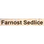 Římskokatolická farnost Sedlice – logo společnosti