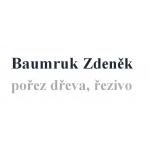 Baumruk Zdeněk – logo společnosti