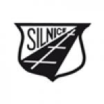 Silnice Horšovský Týn a. s. – logo společnosti