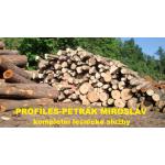 Petrák Miroslav - PROFILES – logo společnosti