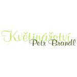 Petr Brandl- KVĚTINÁŘSTVÍ – logo společnosti